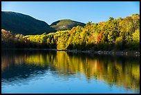 Trees in autumn foliage reflected in pond, Otter Creek. Acadia National Park ( color)