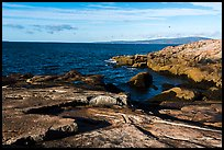 Schoodic Point. Acadia National Park ( color)