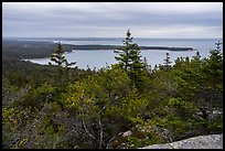 View from Schoodic Head. Acadia National Park ( color)