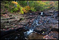 Duck Brook cascades and autumn foliage. Acadia National Park ( color)