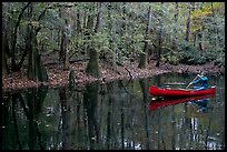 Man paddling a red canoe on Cedar Creek. Congaree National Park, South Carolina, USA.
