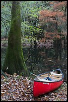 Red canoe on banks of Cedar Creek. Congaree National Park, South Carolina, USA.