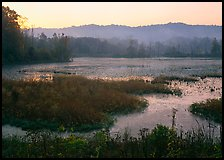 Grasses and Beaver Marsh at sunrise. Cuyahoga Valley National Park ( color)