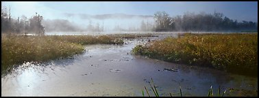 Misty marsh scenery, early morning. Cuyahoga Valley National Park (Panoramic color)
