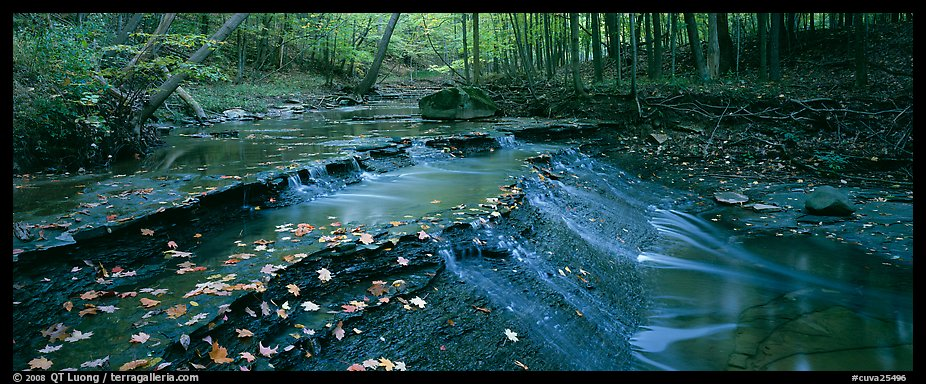 Autumn scene with stream cascading and fallen leaves. Cuyahoga Valley National Park (color)