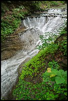 Bridal Veil Falls, high flow, Bedford Reservation. Cuyahoga Valley National Park ( color)