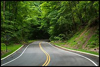 Road in forest. Cuyahoga Valley National Park ( color)