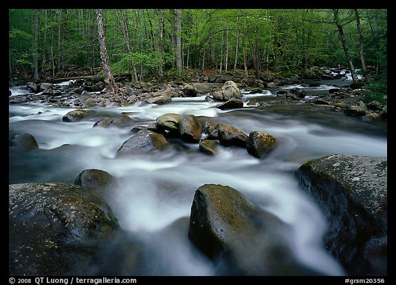 Confluence of the Little Pigeon Rivers, Tennessee. Great Smoky Mountains National Park, USA.