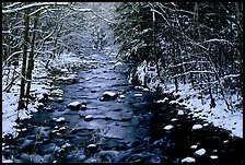 Snowy creek in winter. Great Smoky Mountains National Park ( color)
