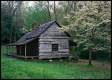 Noah Ogle log cabin in the spring, Tennessee. Great Smoky Mountains National Park, USA. (color)