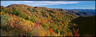 Appalachian hills covered with trees in autumn colors. Great Smoky Mountains National Park (Panoramic color)