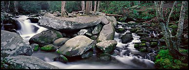 Cascading stream and boulders. Great Smoky Mountains National Park (Panoramic color)