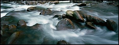 Boulders in river. Great Smoky Mountains National Park (Panoramic color)