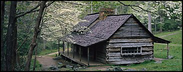 Pioneer cabin in the spring. Great Smoky Mountains National Park (Panoramic color)