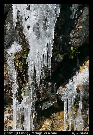 Icicles and rock, overnight frost, North Carolina. Great Smoky Mountains National Park (color)