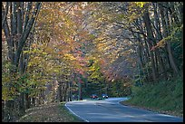 Newfoundland Gap road during the fall, Tennessee. Great Smoky Mountains National Park ( color)