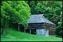 Will Messer Barn, Cataloochee, North Carolina. Great Smoky Mountains National Park ( color)