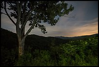 View from Cataloochee Overlook at night, North Carolina. Great Smoky Mountains National Park ( color)