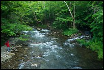 Visitor Looking, Little River, Tennessee. Great Smoky Mountains National Park ( color)