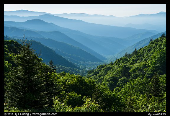 Oconaluftee Valley, early morning, North Carolina. Great Smoky Mountains National Park (color)