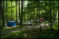 Trailer camping at Elkmont Campground, Tennessee. Great Smoky Mountains National Park ( color)