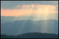 God's rays and ridges from Clingmans Dome, early morning, North Carolina. Great Smoky Mountains National Park, USA. (color)