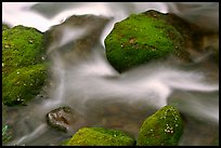 Mossy boulders and flowing water, Roaring Fork River, Tennessee. Great Smoky Mountains National Park ( color)