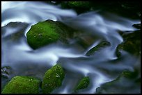 River flow and boulders covered with moss, Tennessee. Great Smoky Mountains National Park, USA.