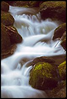 River Cascading, Roaring Fork, Tennessee. Great Smoky Mountains National Park, USA.