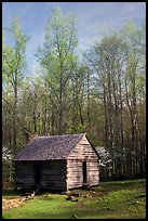 Historic log Cabin, Roaring Fork, Tennessee. Great Smoky Mountains National Park ( color)