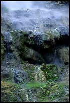 Thermal springs flowing over tufa terrace. Hot Springs National Park ( color)