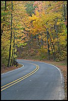 Road curve and fall colors on West Mountain. Hot Springs National Park ( color)