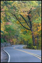 Rood, curve, fall colors, West Mountain. Hot Springs National Park ( color)