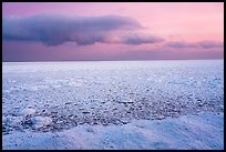 Frozen Lake Michigan from base of Mount Baldy. Indiana Dunes National Park ( color)