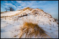 Mount Baldy dune and grass with snow. Indiana Dunes National Park ( color)