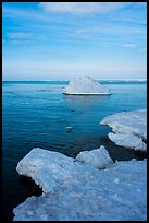 Shelf ice and iceberg, Lake View. Indiana Dunes National Park ( color)