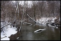 Little Calumet River with fresh snow, Heron Rookery Trail. Indiana Dunes National Park ( color)