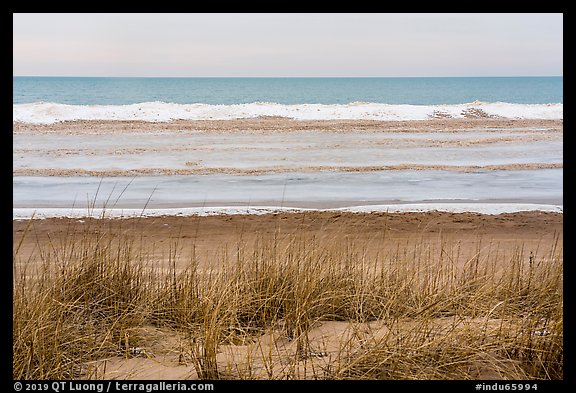 Dune, Marram Grass, and beach with shelf ice, Paul Douglas Trail. Indiana Dunes National Park (color)