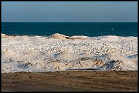 Beach and shelf ice. Indiana Dunes National Park ( color)