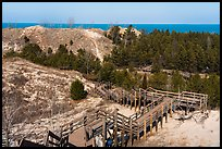 Dune Succession Trail stairs. Indiana Dunes National Park ( color)