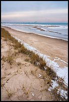 Dune, grasses, beach, and ice. Indiana Dunes National Park ( color)