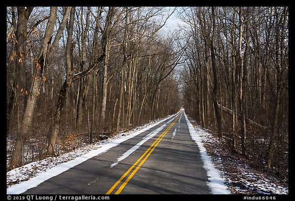 Narrow road in winter. Indiana Dunes National Park (color)