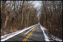Narrow road in winter. Indiana Dunes National Park ( color)
