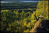 View over forests from Mount Franklin. Isle Royale National Park ( color)