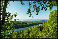 View from Louise Lookout framed by trees. Isle Royale National Park ( color)