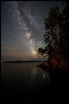 Milky Way and tall trees from Rock Harbor. Isle Royale National Park ( color)
