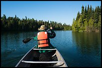 Canoist paddling seen from back, Tobin Harbor. Isle Royale National Park ( color)