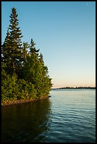 Trees growing at edge of water on Tookers Island. Isle Royale National Park ( color)