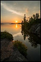 Sunrise and trees, Moskey Basin. Isle Royale National Park ( color)