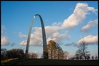 Arch, trees and clouds, winter late afternoon. Gateway Arch National Park ( color)